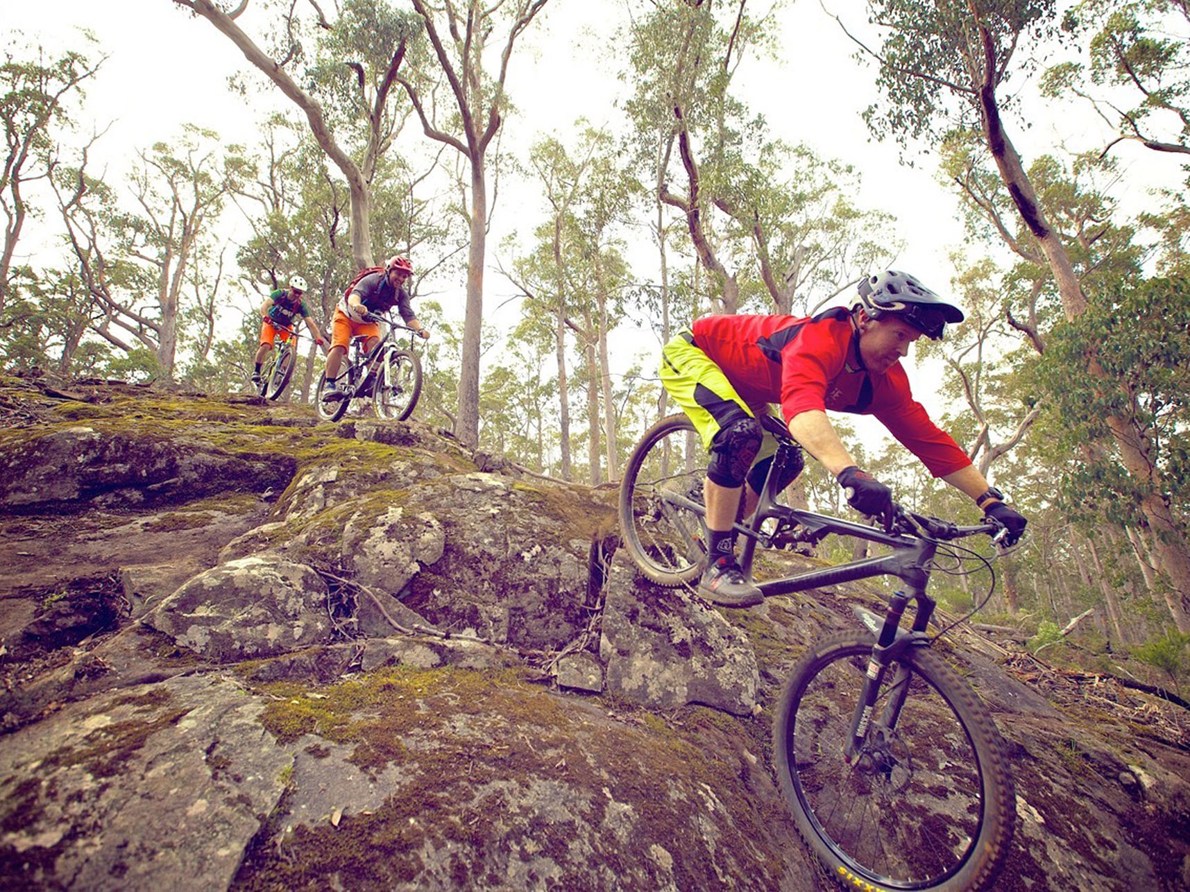 Dirt art world class mtb trail design consultancy for Design consultancy